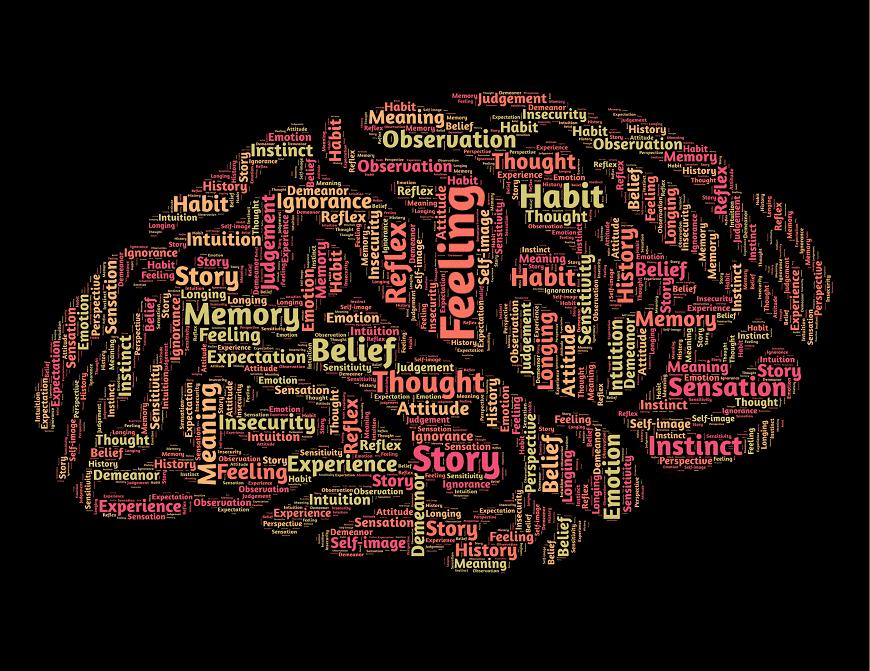 programación Neurolingüística FREY TDFEVA